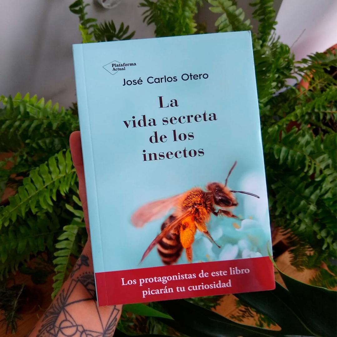 LIBRO_INSECTOS
